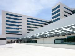 - Hospital Universitario la Fe
