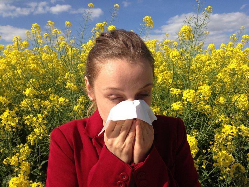 ¿Cuál es el tratamiento de las alergias respiratorias?