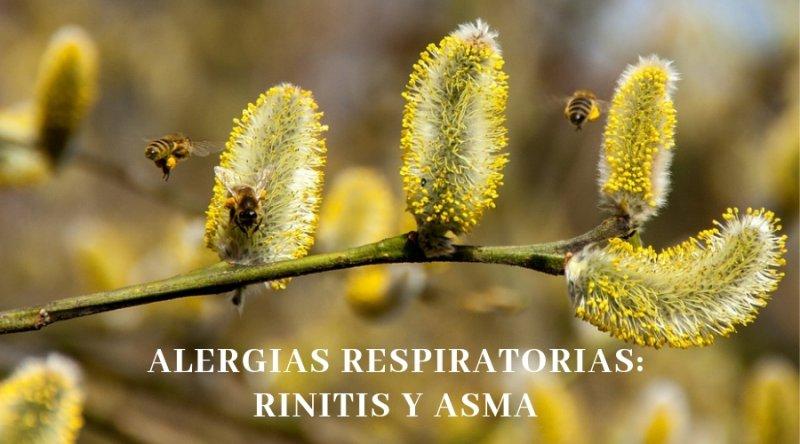 ¿Cuál es la frecuencia de la rinitis y el asma y como se puede sospechar que inicialmente se padece?