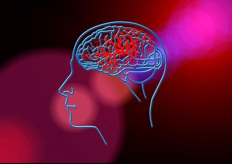¿Cómo se debe tratar la epilepsia?