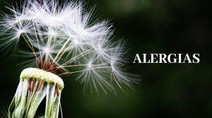 ¿Cómo se producen y manifiestan las enfermedades alérgicas?