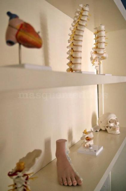 Material didáctico - Instituto de Terapias Manuales