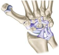 Complejo Fibrocartilago Triangular - Dr. Gaetano De Santolo