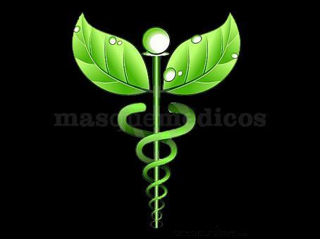 - Salud + Naturista