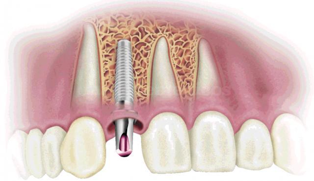 - Clínica de Odontología Natural Dra. León