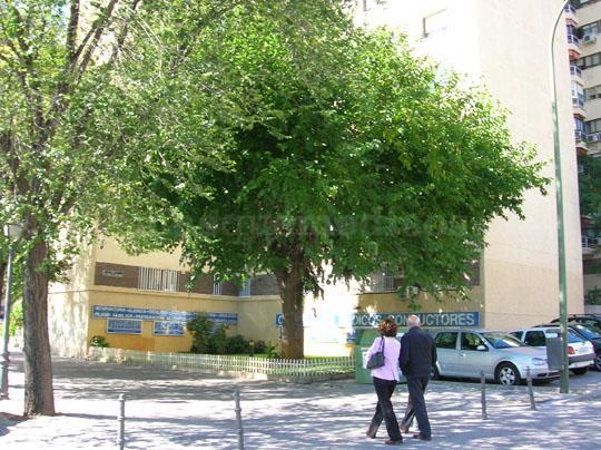 Centro Clinico Betanzos 60 Madrid - Rómulo Rojas Carpio