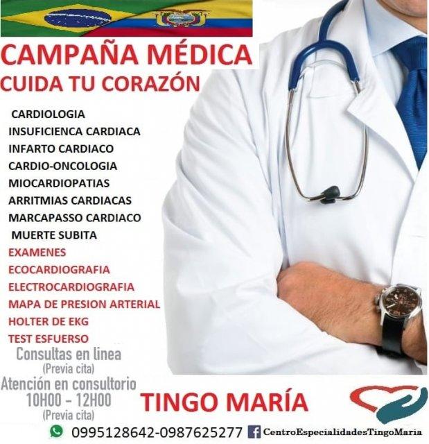 - Edwin Santiago Allauca Tingo