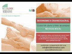Terapia Biodinámica Craneosacral