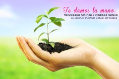 Naturoapatia - Tara Salud Integral