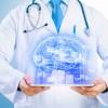 Neuro  El diagnóstico de las enfermedades del sistema nervioso - Imagenología